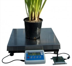 WSM2 Weigh Scale Meter