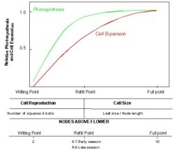 Soil Water Content as it Affects Plant Growth and Yield.