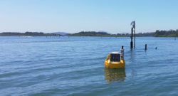 ICT Data Buoy at Oyster Farm Site